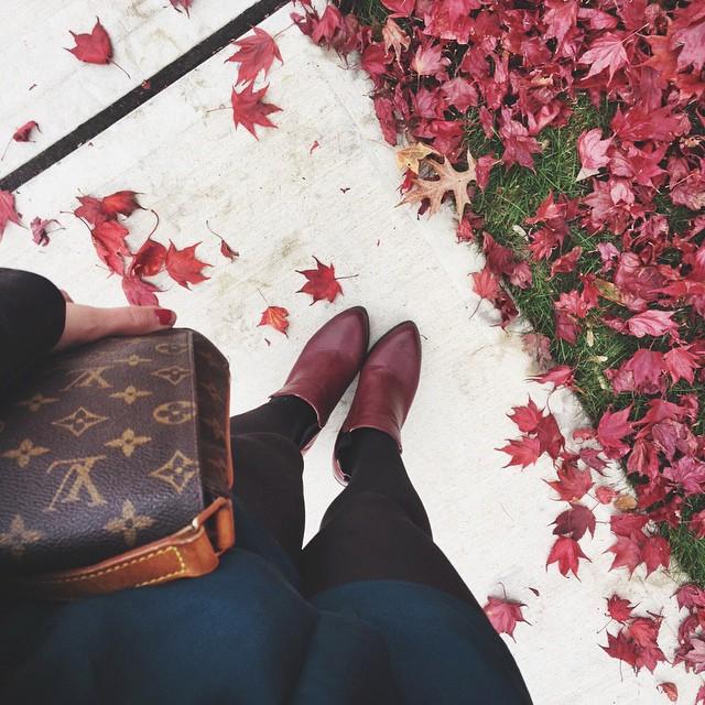 |fall colors|